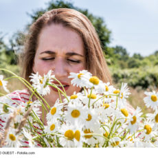Can Acupuncture Help Hay Fever?